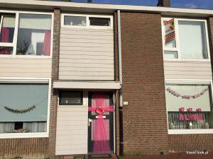 holandia, amsterdam, haga, dookoła świata, europa (65)