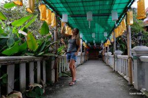 loy krathong, thailand, tajlandia, chiang mai, święto, dookoła świata, podróż, travel, travelook, travellookela (10)
